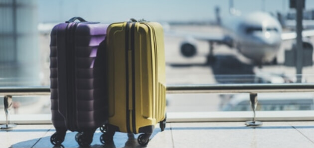 The Types Of Food You Can Bring Through Airport Security